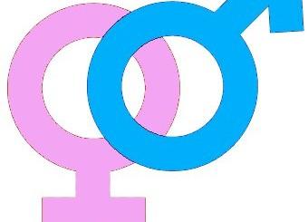 Orgoliul. Masculin vs. Feminin